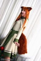 Horo Cosplay Spice and Wolf by AnaAesthetic