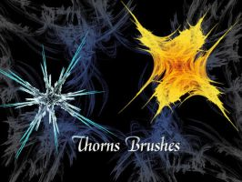 Thorns Brushes by xara24