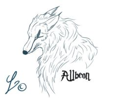 Allbeon by Loheco