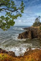 Otter Rock Seascape #2 by cokehead666