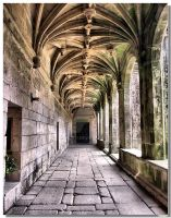 S. Goncalo cloister by vrphoto