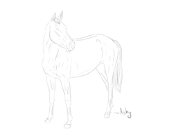 Horse lineart 2 by PSitsAshy