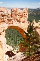 Arche in Bryce Canyon by MCL28
