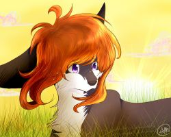 crying in fields of gold by coffaefox