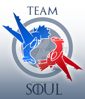 Team Soul by Seoxys6