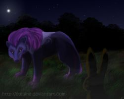 Night-time Encounter by Stelline