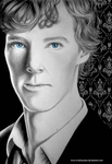 The Consulting Detective by love-a-lad-insane