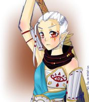 Hyrule Warriors: Impa by Kuro-Rey
