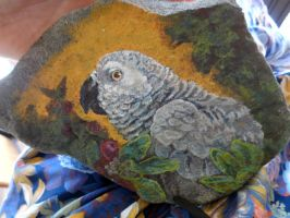 African Grey Rock by Feyoka