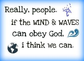 We Can Obey by WolvesRock15