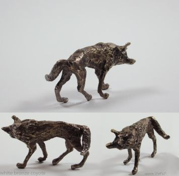 bronze coyote by wylieblais