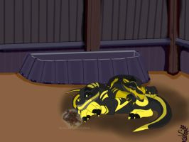 DB:Tainted Gold-What Might Have Been by BlackDragon-Studios