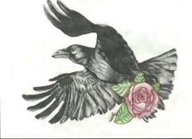 Rose in the Claws of a Crow by TheBlackWingedBullet