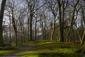 Clingendael by TimothyG81