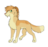Point adoptable OPEN by Mitzi-Mutt