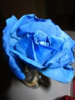 Blue Rose by CallMeAlice23