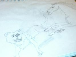 Horse and Wild cat by Lunawolf2234