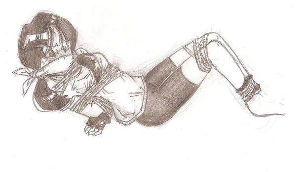 Videl by Anime-Gagged