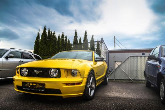 Ford Mustang GT by CynderxNero
