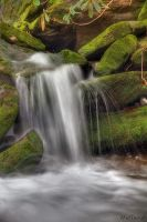 Smoky Mountain Stream by Recalibration