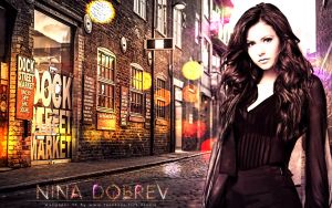 Wallpaper Nina Dobrev By Sd by sidouxie2014