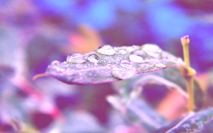 Droplets by inmymind81