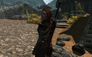 Aela the Huntress: The Tactician by AlleyneTheElf