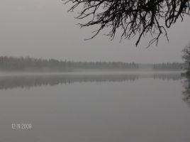 misty water by rosecourt