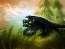 HTTYD: Toothless Speedie by Shonk-ness