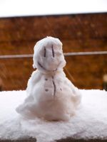 My own mini snowman by trencapins