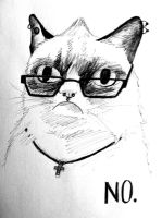 Me as Grumpy Cat by summitstars