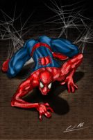 Colored Spiderman by exodo31