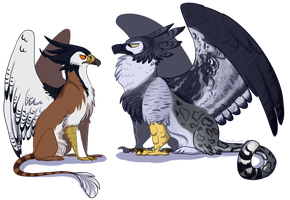 gryphons by xDorchester
