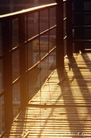 Fire Escape by peterkopher