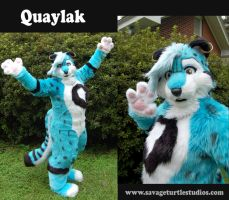 Quaylak Fursuit Updated by JakeJynx