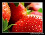 Strawberry's Last Stand by shutterbug226