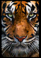 Tiger close up - vector by elviraNL