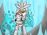 Silver and Baby Leon at play by blackzero04