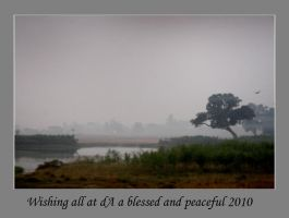 A wish for 2010 by bingbing51