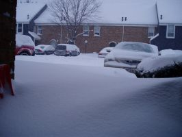 Blizzard 2008 Picture 0018 by lilly-peacecraft