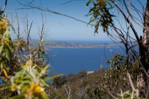 View from Mt Nelson Track 2 by KittenKiss