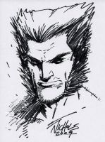 Wolvie sketch by FlowComa