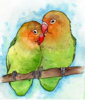 Lovebirds by NatterJay