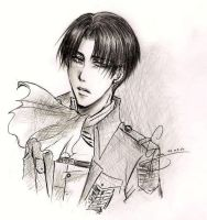 SNK - Captain Levi sketch by ChocotanYuu