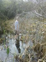 levi in dead cottonwood swamp. by peaceriverflorida