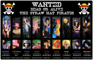 One Piece - 03 - WANTED by mangalphantom
