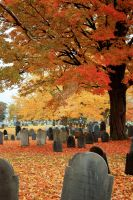 Autumn Cemetery V by lionfeathers