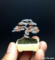 Silver copper wire bonsai tree by Ken To by KenToArt