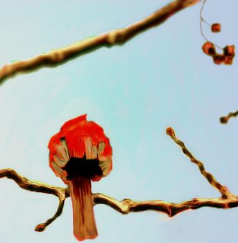 Cardinal Sitting On A Japanese Cherry by CHSD