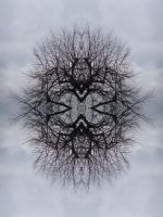 Mirrored tree by Xenaris